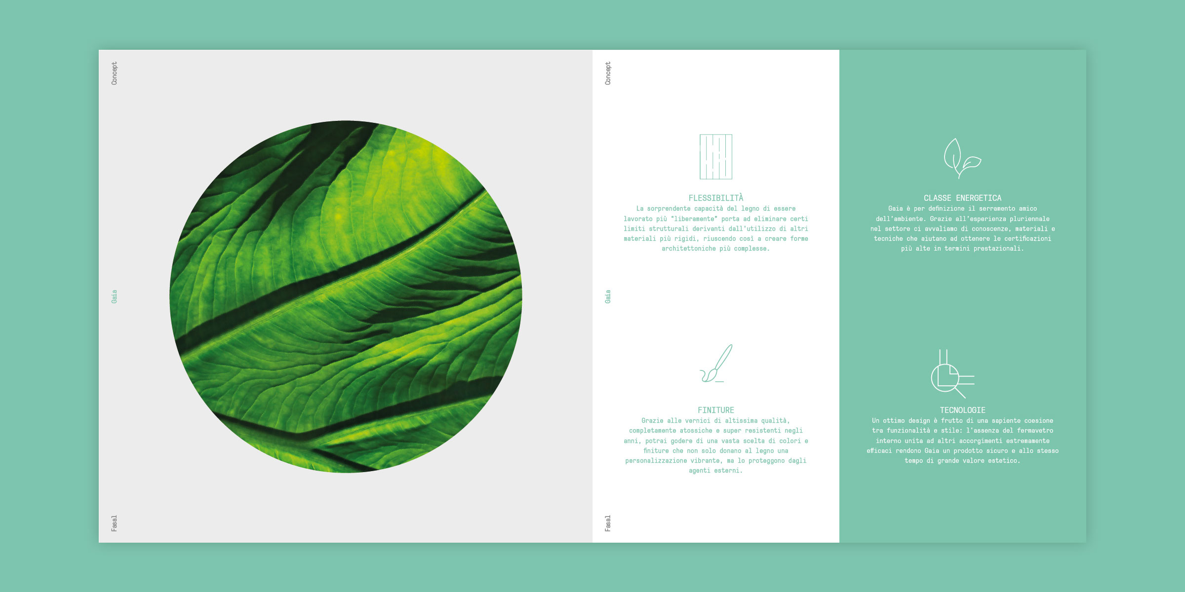 Catalogo-Gaia-03